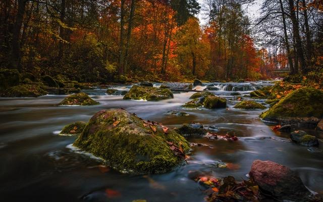 Finland autumn