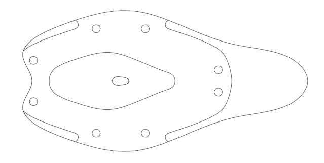 Caphenon outline
