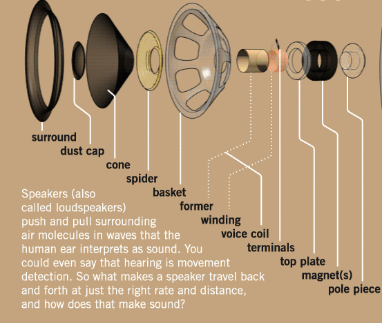 how speakers make sound and other cool animated graphics oregon expatSpeaker Parts Diagram #8